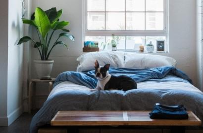 Quel est l'emplacement idéal pour bien dormir et passer des nuits de rêve ?