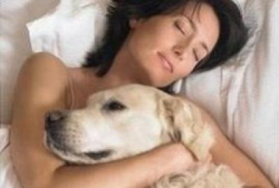 Peut-on dormir avec son animal de compagnie ?